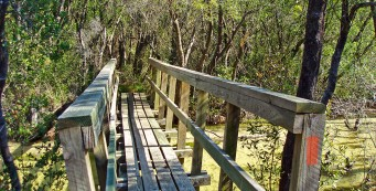 Bridge in Eglin East