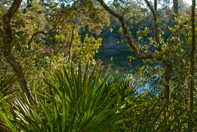 Florida Trail, Hopkins Prairie to Juniper Springs