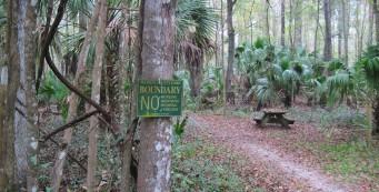 Florida Trail, Baseline to Marshall Swamp