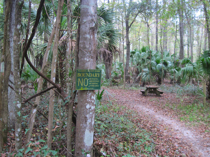Florida Trail, Baseline to Marshall Swamp