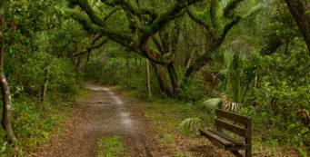 Fort Cooper Hiking Trails