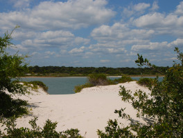 Fort Matanzas Nature Trail