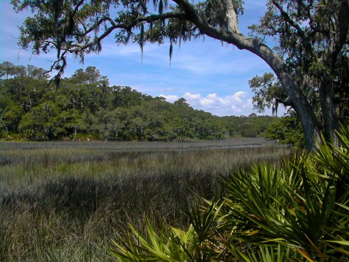 GTM Reserve