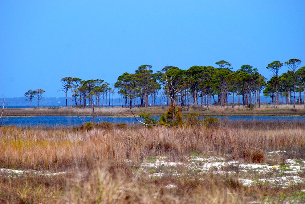 St George Island State Park Fees