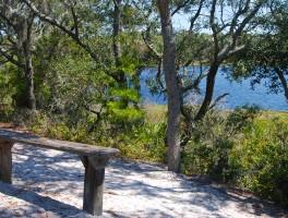 Gator Lake Trail