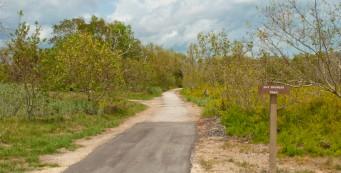Guy Bradley Trail