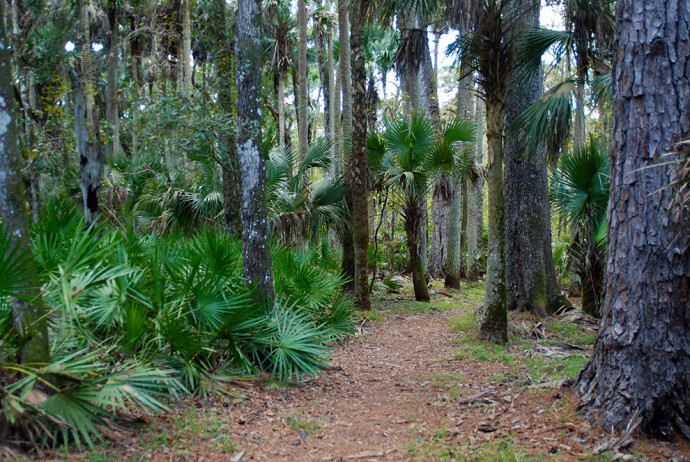 Indian Mound Trail