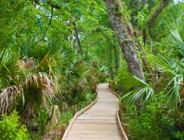 Juniper Creek Nature Trail
