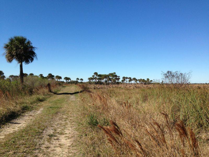 Kissimmee Prairie Military Trail