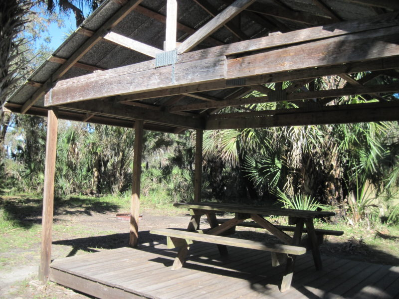 Kissimmee Prairie primitive campground