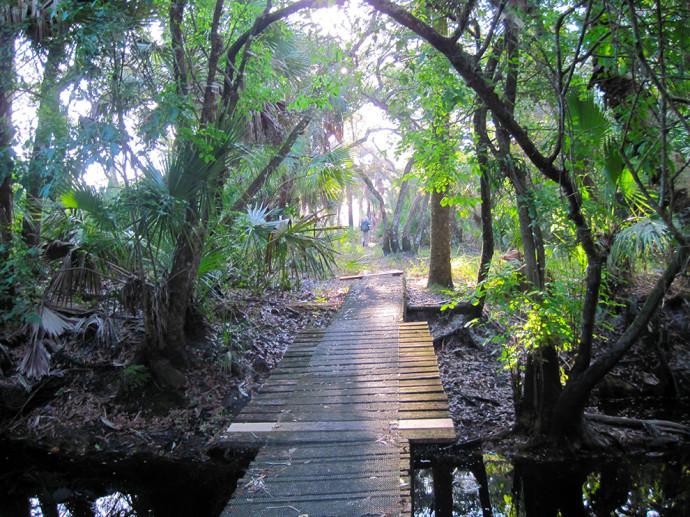 Kitching Creek Loop
