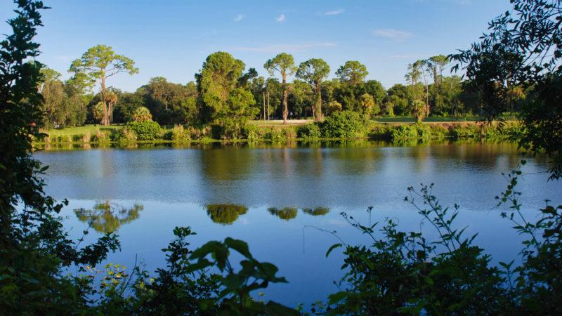 Caloosahatchee River LaBelle