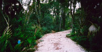 Leslie Duncan Memorial Trail