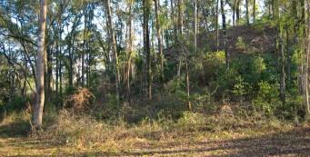 Letchworth-Love Mounds