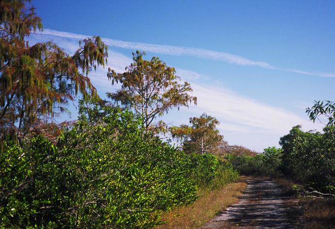 Old Ingraham Trail