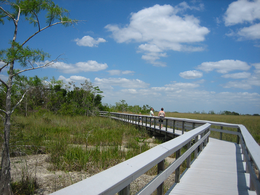 Pa-hay-okee Boardwalk
