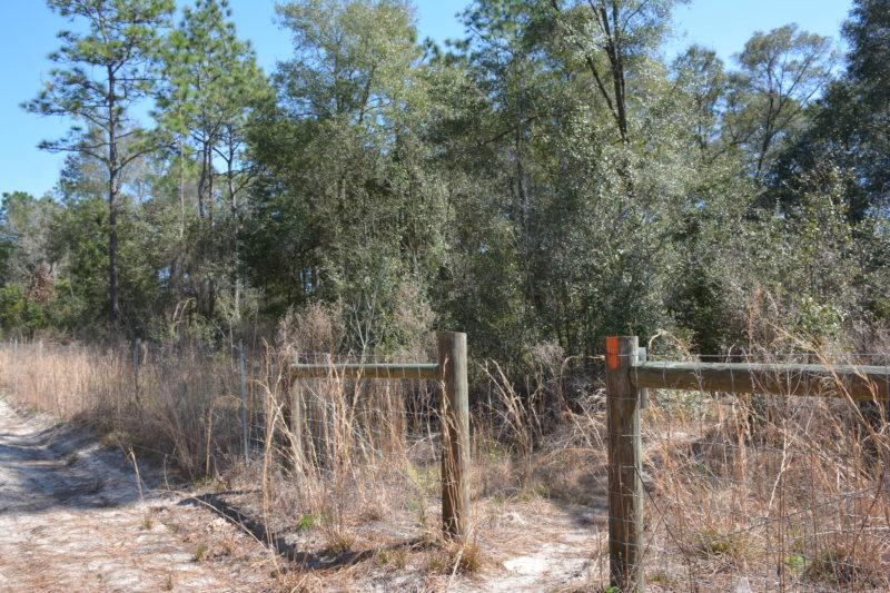 SR 200 fence gap Ross Prairie