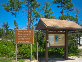 Seabranch Preserve Hiking Trails