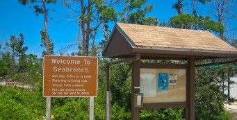 Seabranch Preserve State Park