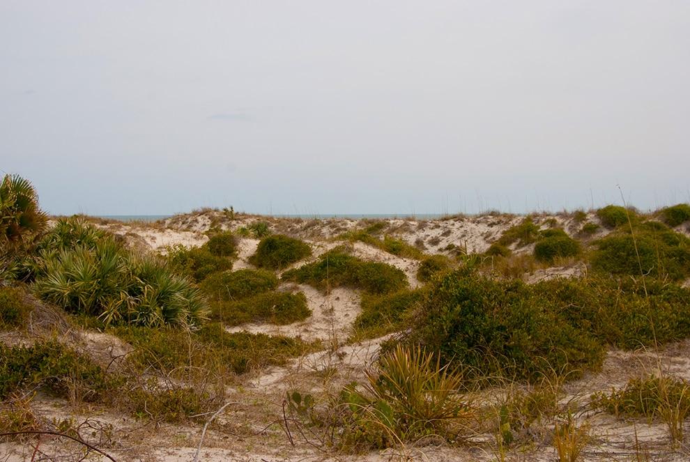 Smyrna Dunes Park