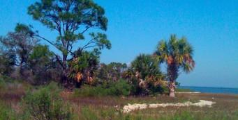 St Joseph Bay