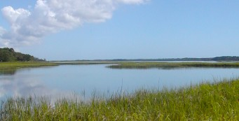 Stokes Landing Conservation Area