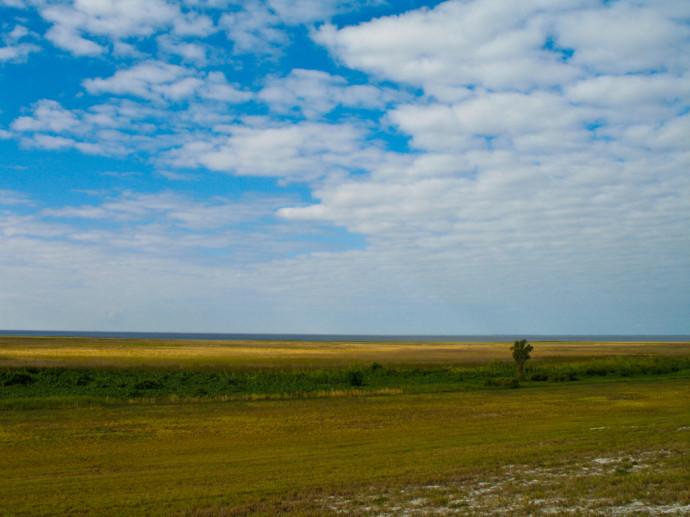 Marshes near Chauncey Bay