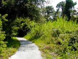 Path at Boyd Hill Park