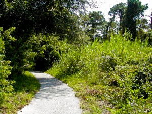 Path at Boyd Hill Park