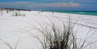 Henderson Beach (image courtesy DEP)