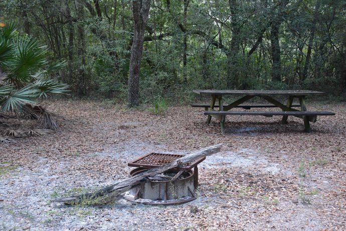 Ross Prairie Primitive campsite