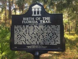 Florida Trail, Ocala National Forest