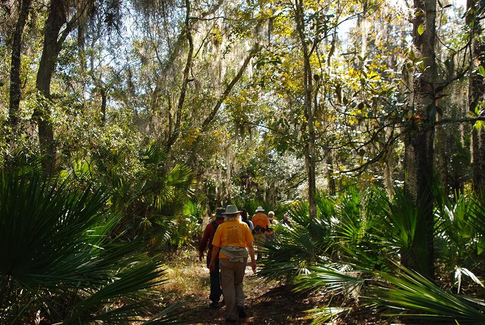 Dog-friendly hikes in Florida | Florida Hikes!