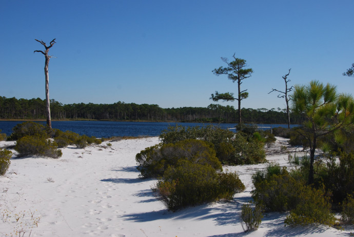 Topsail Hill Preserve Hiking Trails Florida Hikes