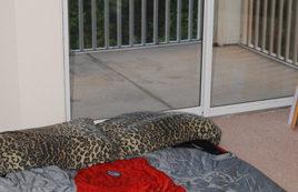 Floor model: Big Agnes