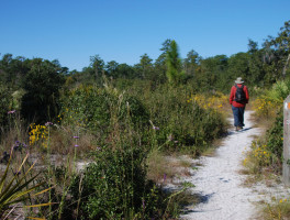 Wekiwa Springs Hiking Trail