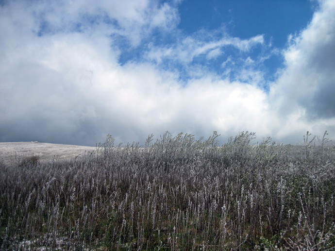 Max Patch in Snow