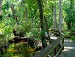 Lake Mills Park a quiet retreat