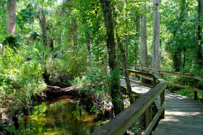 Lake Mills Park