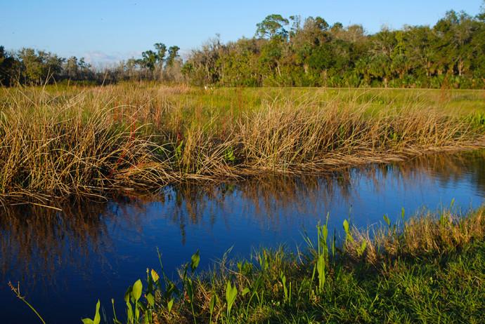 Lake Woodruff NWR