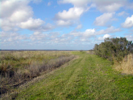 Seminole Ranch – Puzzle Lake