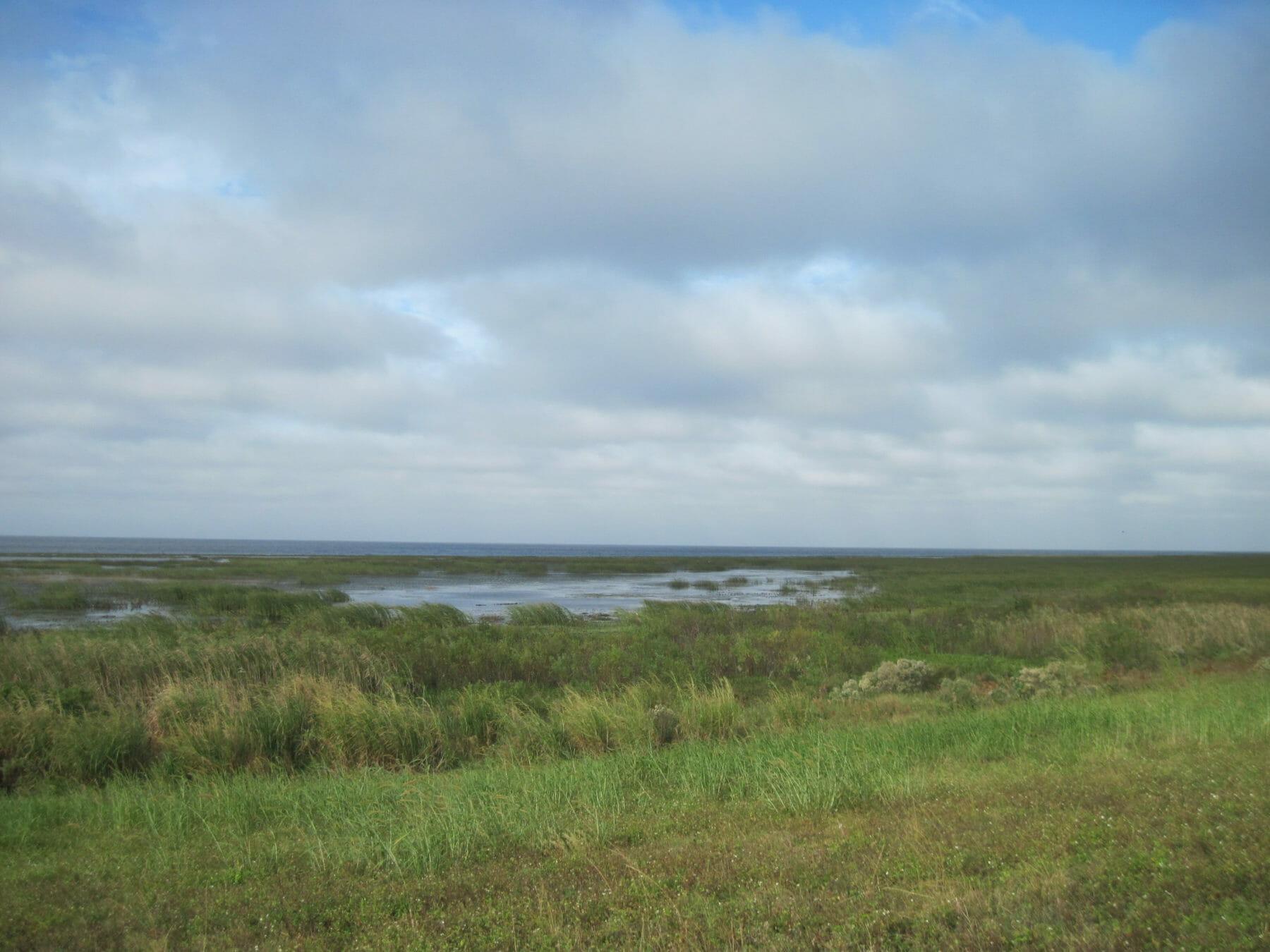 Chauncey Bay Okeechobee