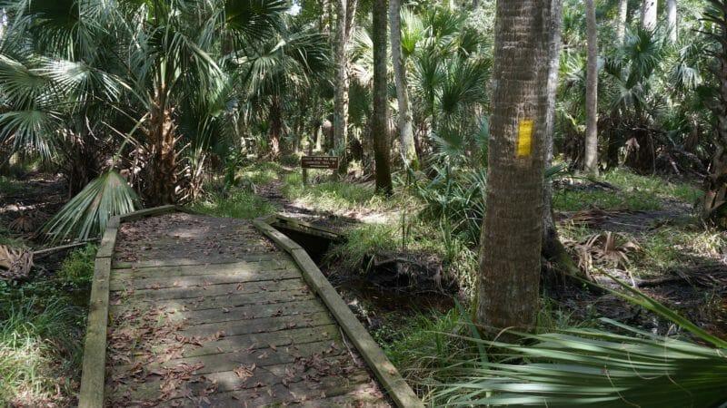 Bulow Woods bridge