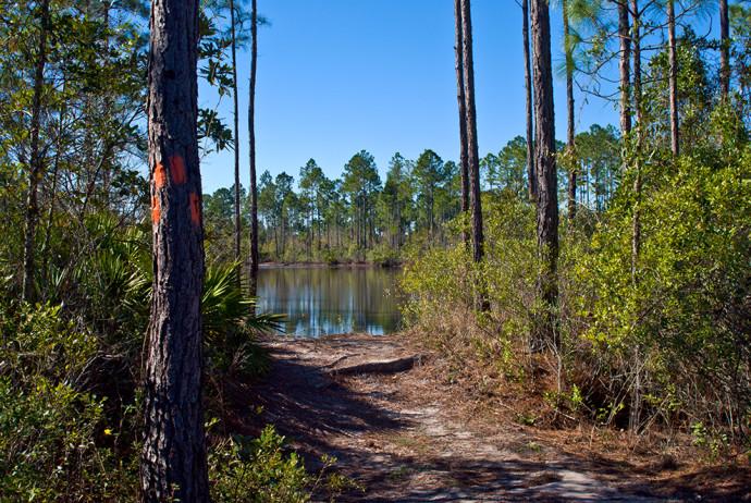 Florida Trail, Buckman Lock to SR 20