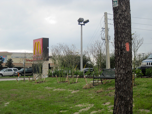 McDonalds on the Florida Trail