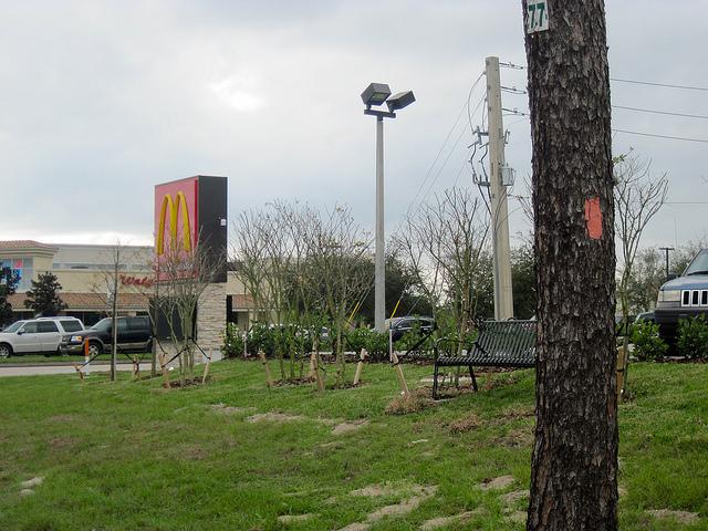 McDonalds on the Florida Trail