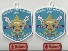 Return to Scouting