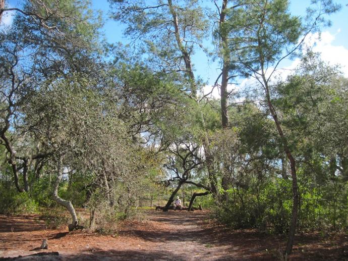 Hidden Pond campsite