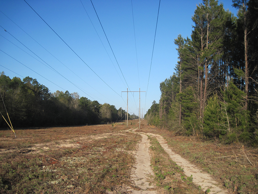 Power line at Hutton