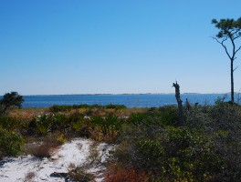 Exploring Trout Point in Pensacola